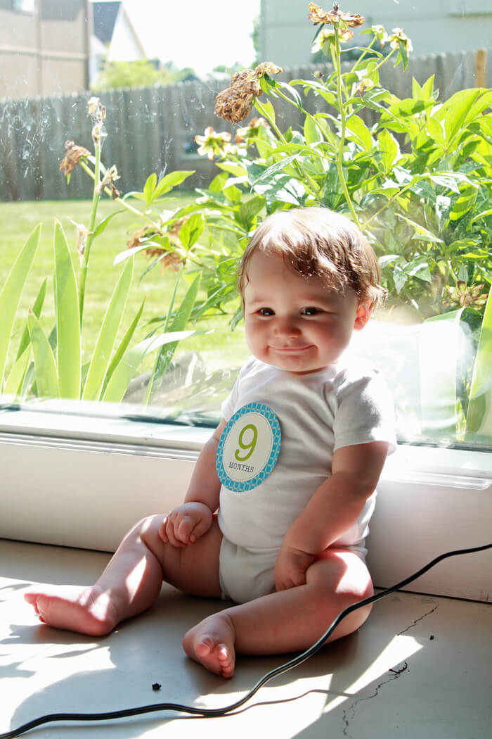 graham 9 mo window