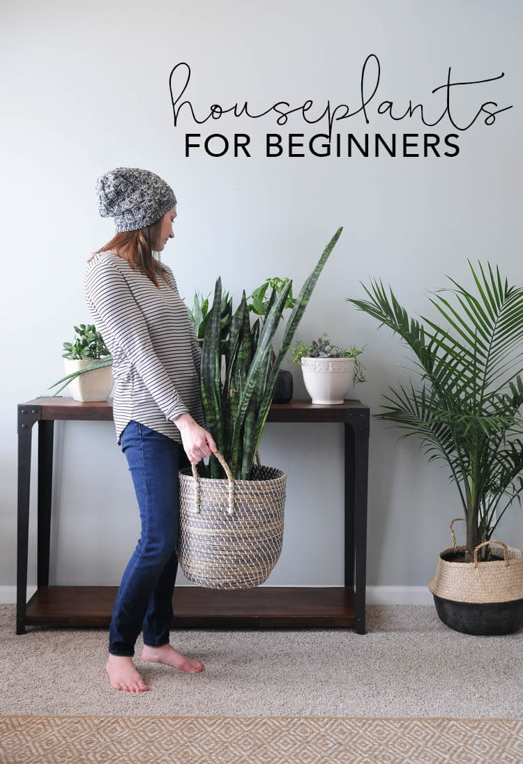 My breezy room home decor and diy for Indoor plant decoration design