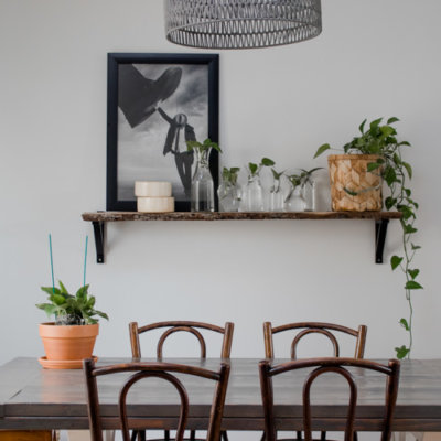 Shelf Decorating Idea: Propagated Plant Shelf