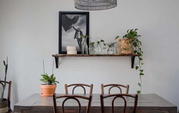 Simple shelf decorating idea: Propagated pothos in various sized jars/vases