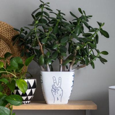 DIY Planter Design with Cricut