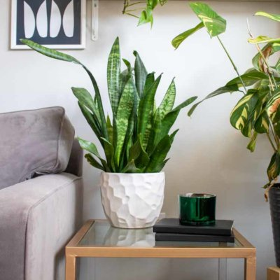9 Ways to Add Texture to Your Home
